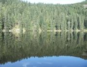 Lago na saída da Floresta Negra na viagem para a Alsácia